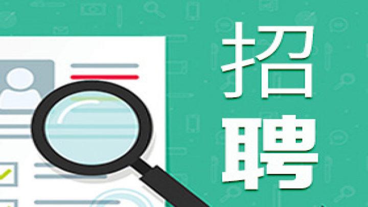 2019年马栏山(长沙)视频文创园管理委员会公开招聘