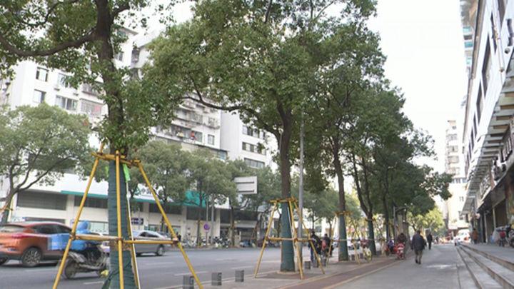 城区有机更新进行时丨天心区: 细微之处暖人心