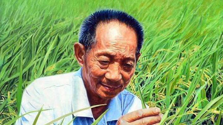 88岁袁隆平的两个梦:实现还需十年,完成就能退休