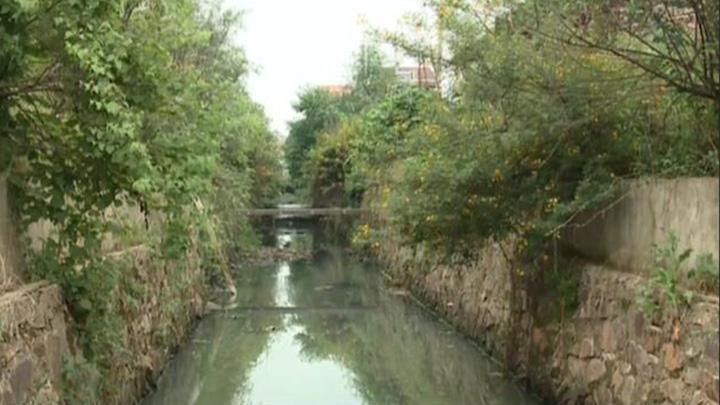 养猪场藏身禁养区污染水体 当地政府迅速开展污染防治
