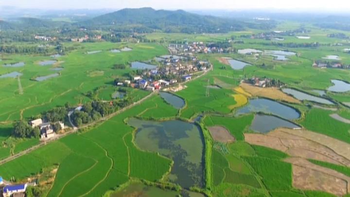 2018年农业产业强镇示范建设名单出炉 双江口和金井榜上有名
