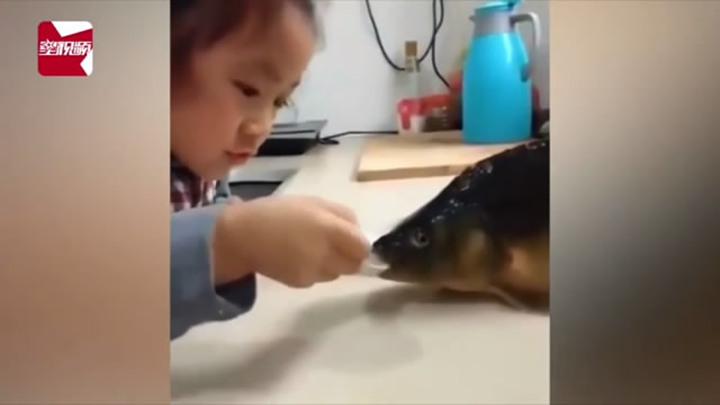 5岁萌娃用勺儿喂鱼喝水,网友:一个敢喂一个敢喝