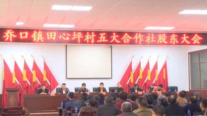 望城:五大合作社成立 村民变股东