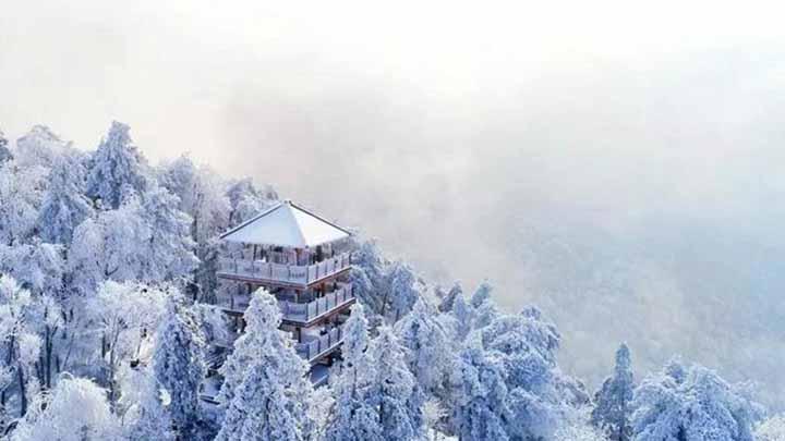 长沙第一场雪遭遇两重天:市区见雨难觅雪,沩山、大围山银装素裹
