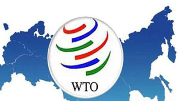世贸组织欲成立专家组调查美国加税问题