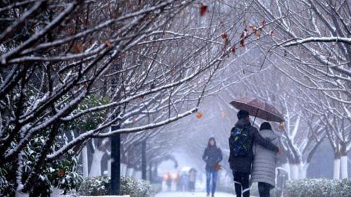 """2019刚开年全球天气已""""爆表"""":多国极端天气打破纪录"""