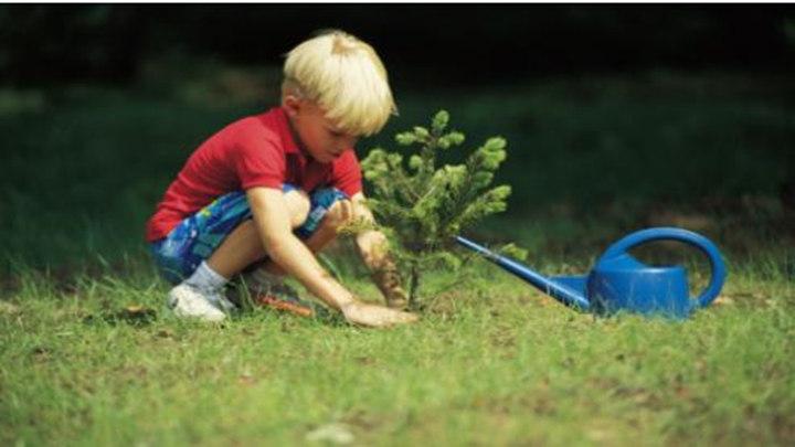 植树节期间,长沙将开放110个义务植树基地