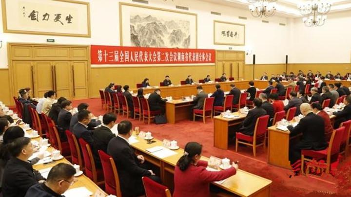 湖南代表团举行第一次全体会议 推选杜家毫为团长,许达哲等为副团长