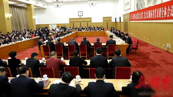 湖南代表团举行第二次全体会议 胡春华参加审议