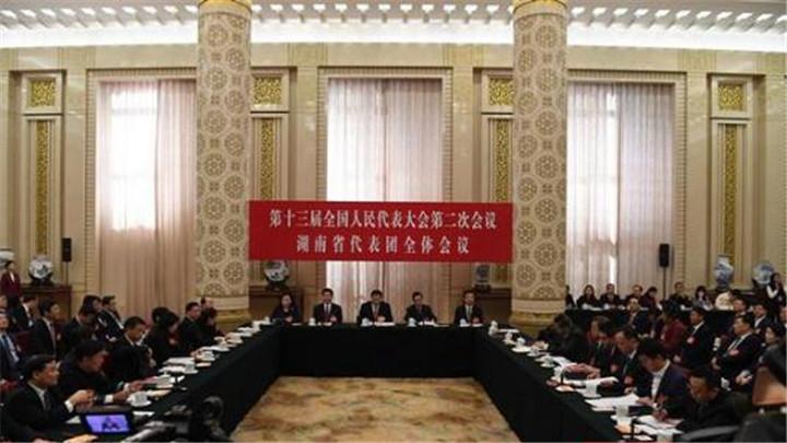 湖南代表团举行第四次全体会议 向中外媒体开放