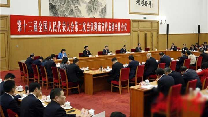 湖南代表团举行第七次全体会议 杜家毫许达哲参加审议