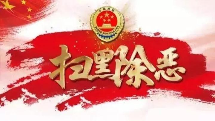 """【扫黑除恶】长沙岳麓检察:依法对""""天狮""""传销涉恶组织115名犯罪嫌疑人提起公诉"""