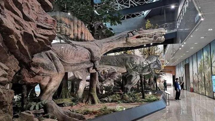 """湖南省地质博物馆今日开馆,6大展厅""""可看可学可玩"""""""