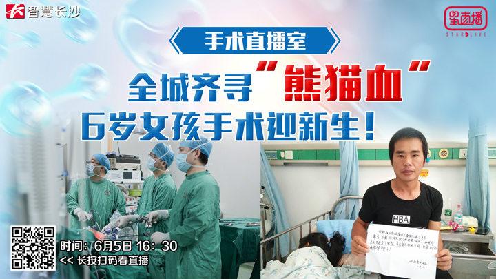"""全城齐寻""""熊猫血"""",6岁女孩手术迎新生!"""