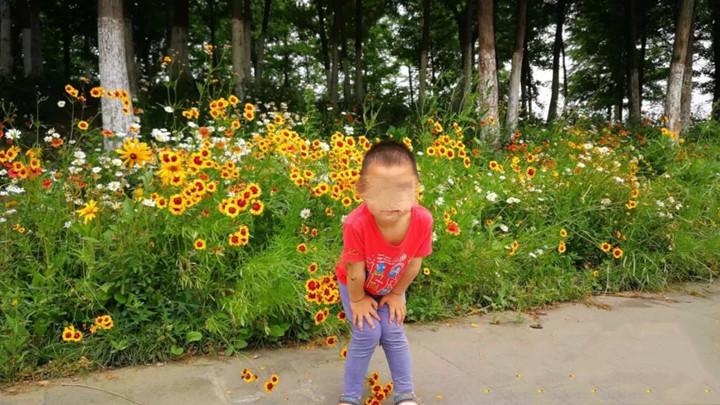 心痛!200多斤重钢化玻璃剥落,4岁男孩被砸不幸身亡!