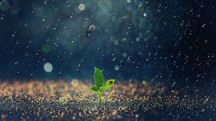 长沙市气象局发布雨情及降水趋势