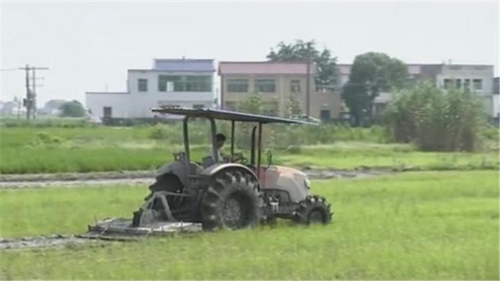 望城:新型职业农民助力乡村振兴