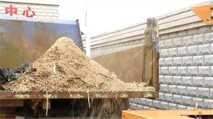 长沙全面推进生活垃圾分类减量丨浏阳柏加镇:树枝粉碎机 变废为宝新时尚