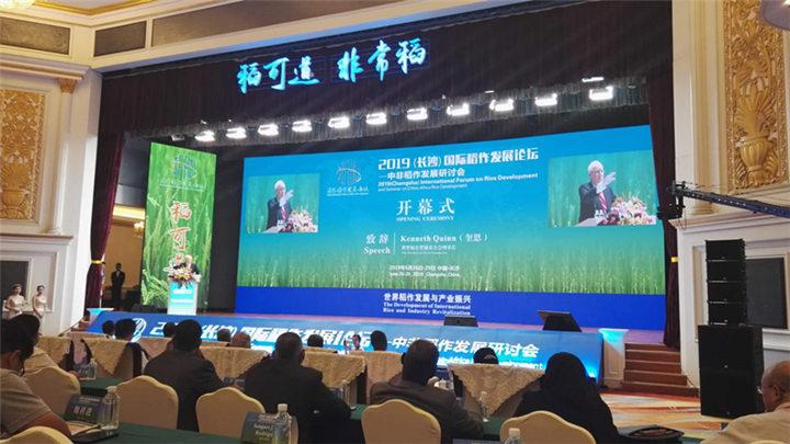 2019(长沙)国际稻作发展论坛——中非稻作发展研讨会开幕