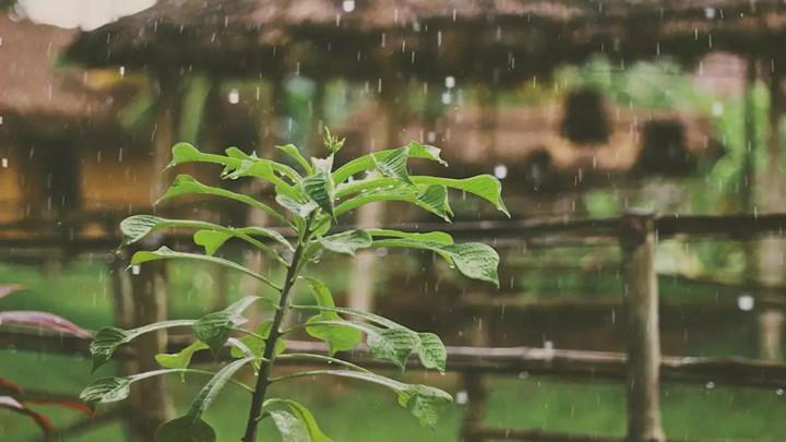 最新丨长沙市气象局发布防汛气象信息