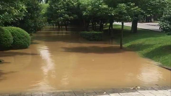 橘子洲景区水情实况①:亲水步道水位持续上涨
