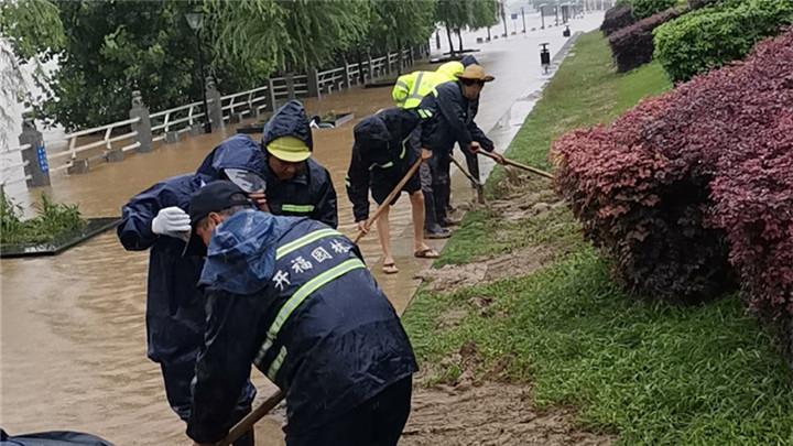 水退一寸清洗一寸   园林人在行动