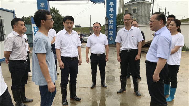 市领导赴雨花区检查指导防汛工作