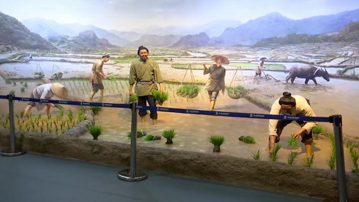 隆平水稻博物馆:参观学习好去处