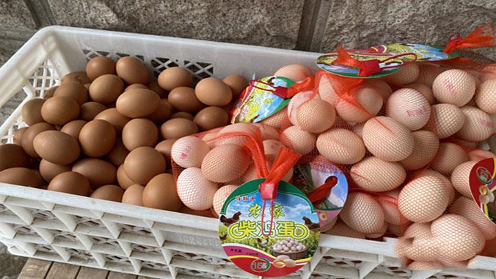 鸡蛋降价了!蛋价连续12个工作日下降 月内降幅近20%