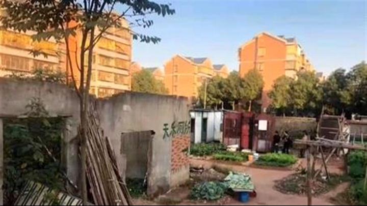 """建设更高水准的全国文明城市丨农安小区的""""蝶变"""""""