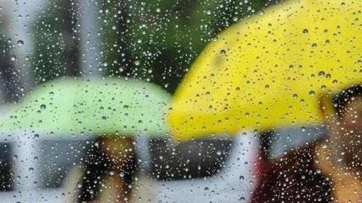 """""""假冬天""""要走了?下周湖南气温大跳水!降温+下雨!还有...."""